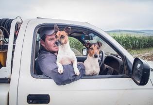 Farming Companions