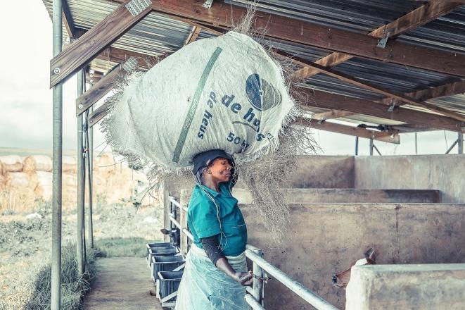 Farm Worker (4)