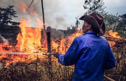 Fire season (2)