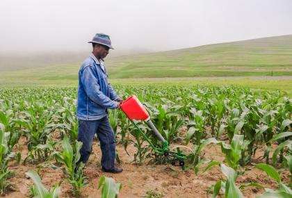 Backsaver Farm Equipment for Smallholder farmers
