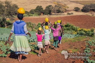 Harry Gwala Agri Mentorship program (5)