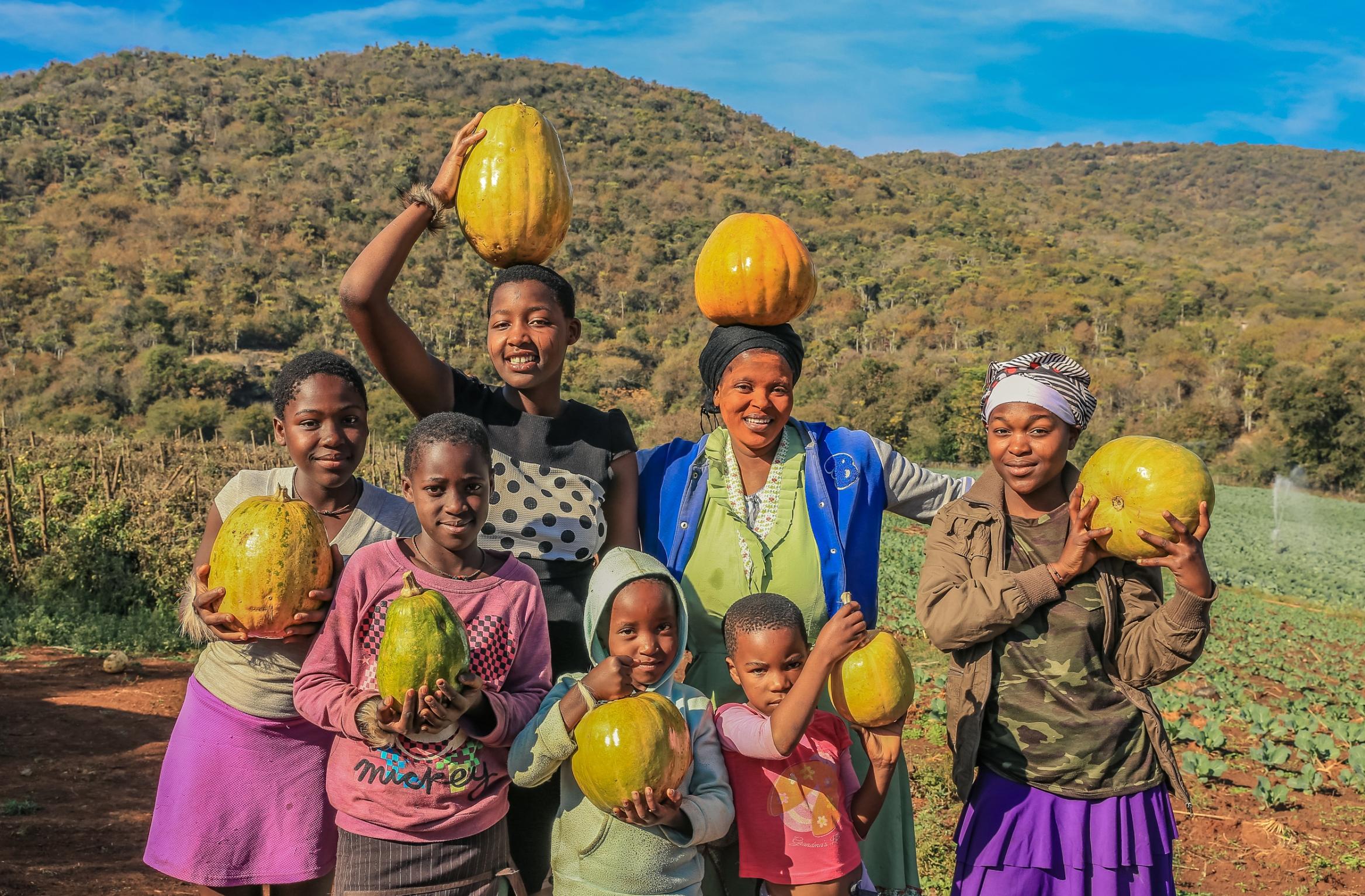 Harry Gwala Agri supporting smallholder farmers