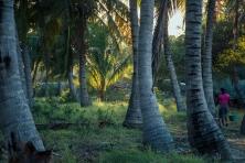Mozambique Getaway