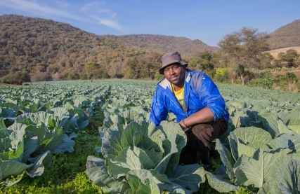 Smallholder farmer in Ixopo