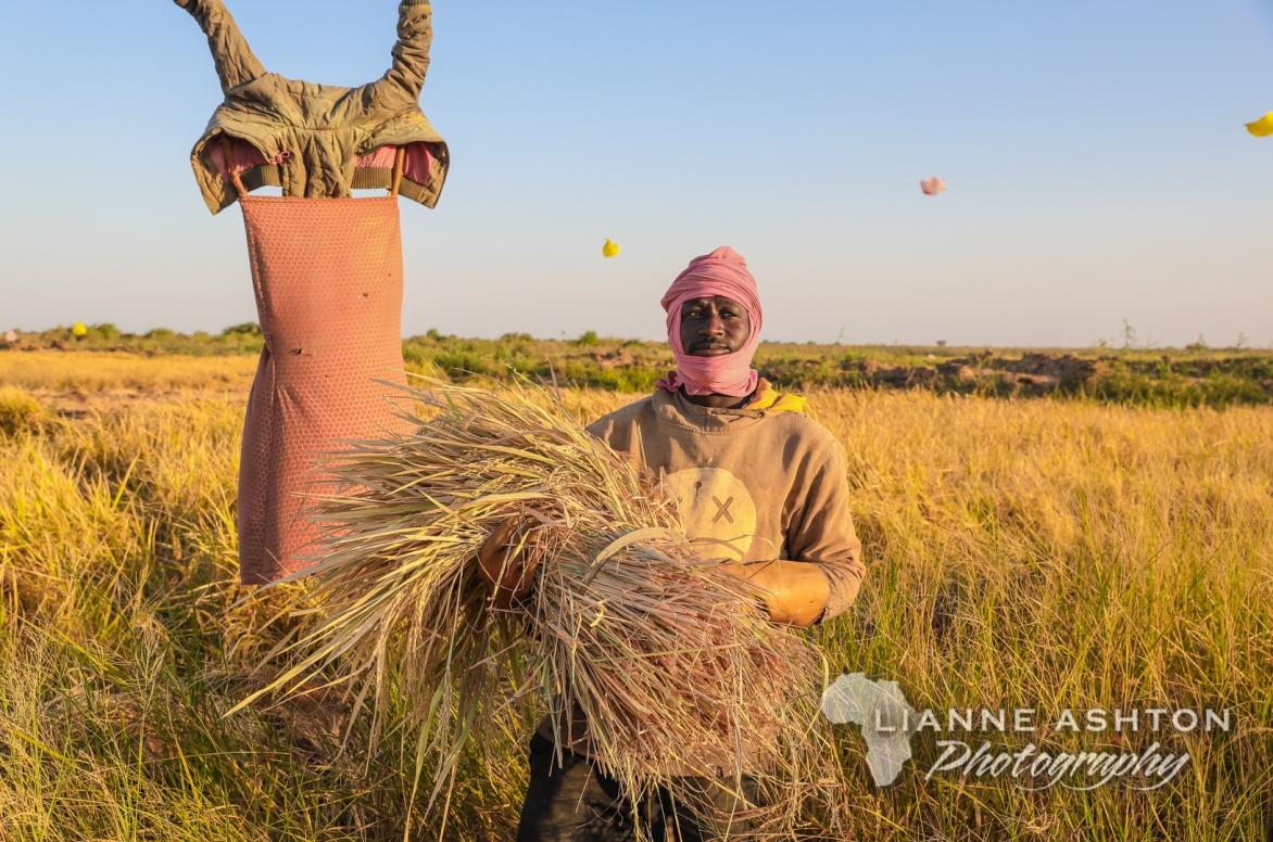 Senegalese scarecrow