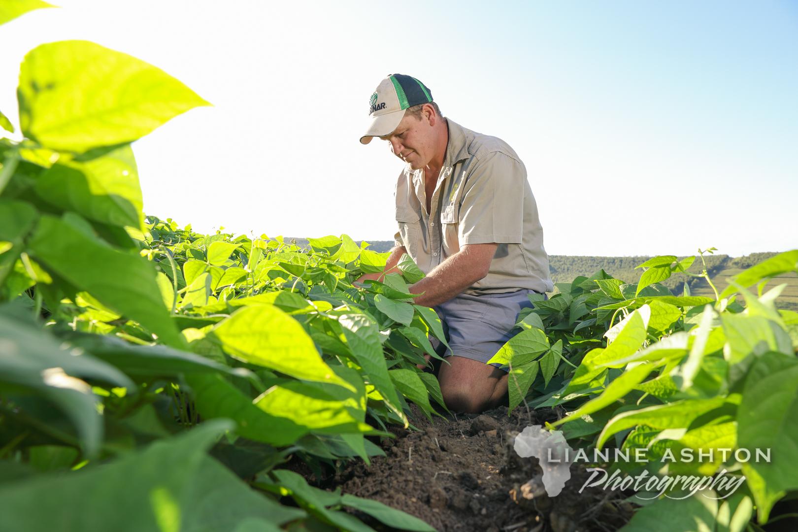 Pannar farmers (8)