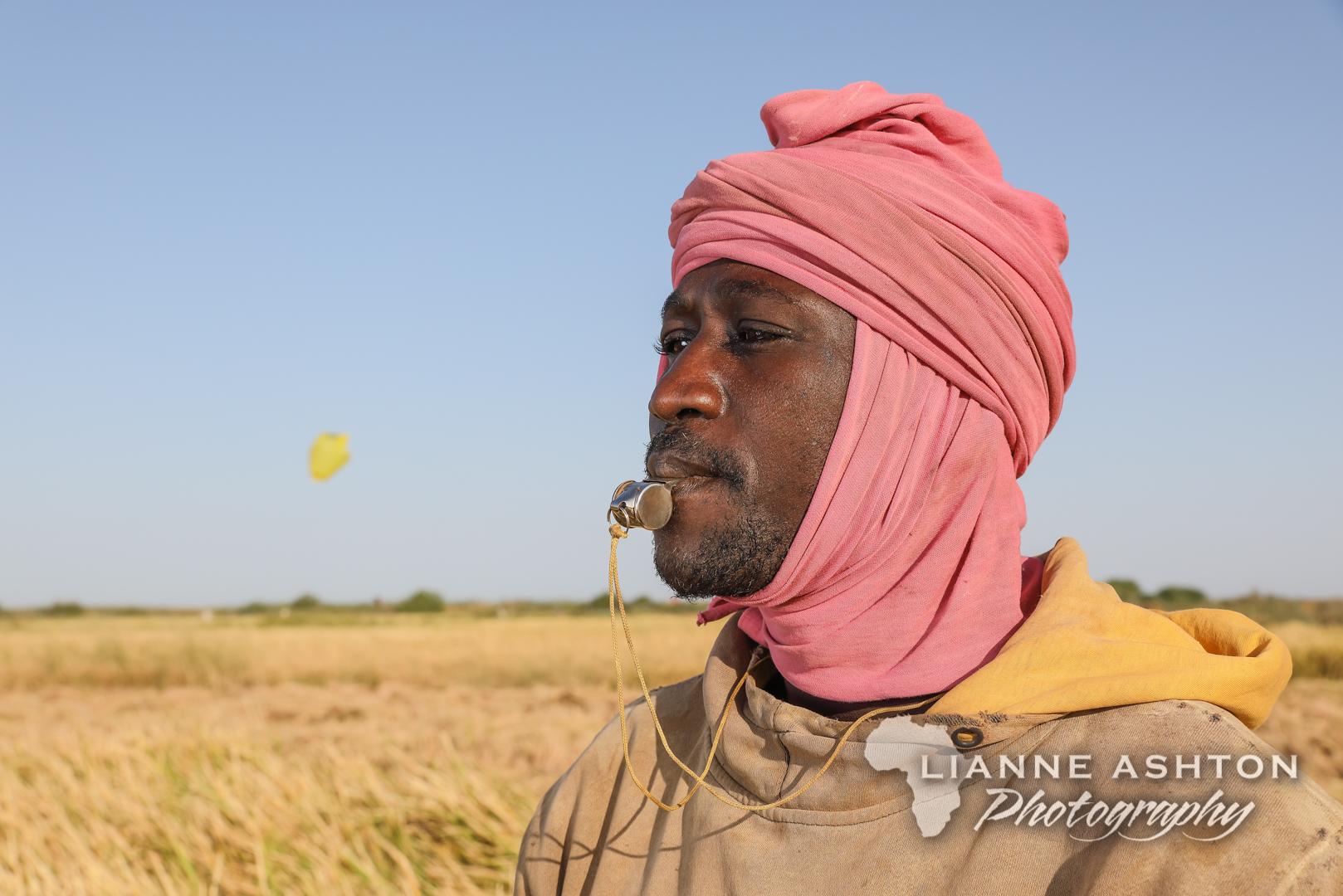 Smallholder farmer in Senegal