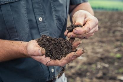 Soil (6)