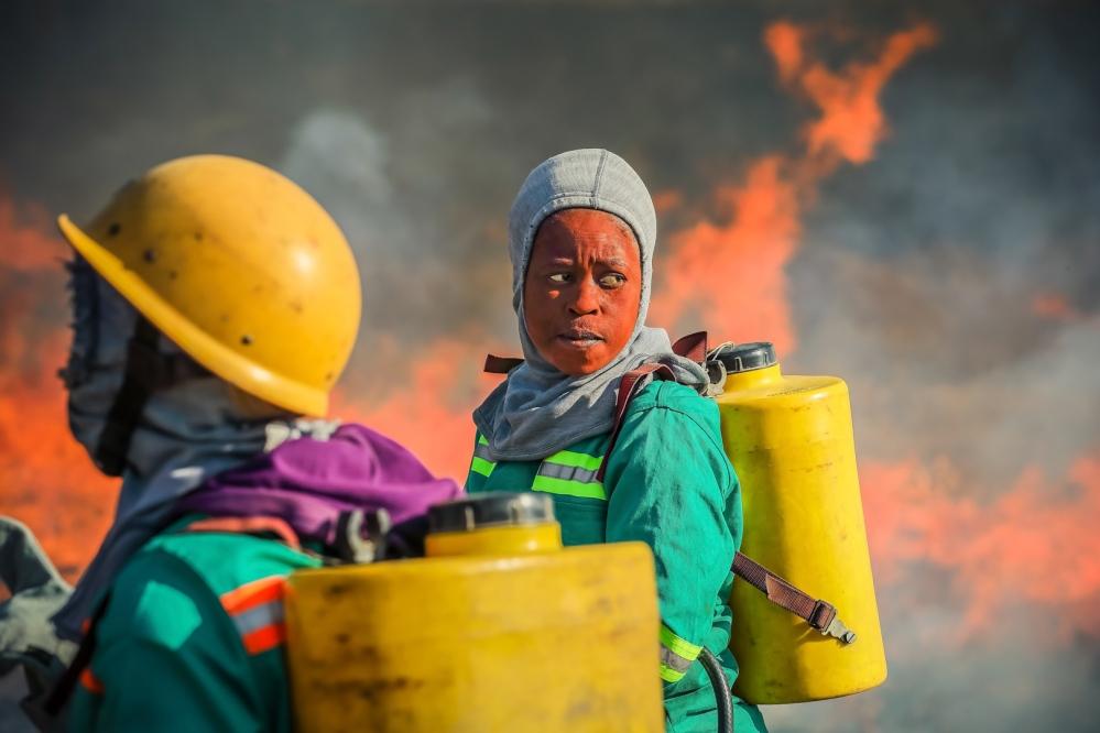 Burning firebreaks