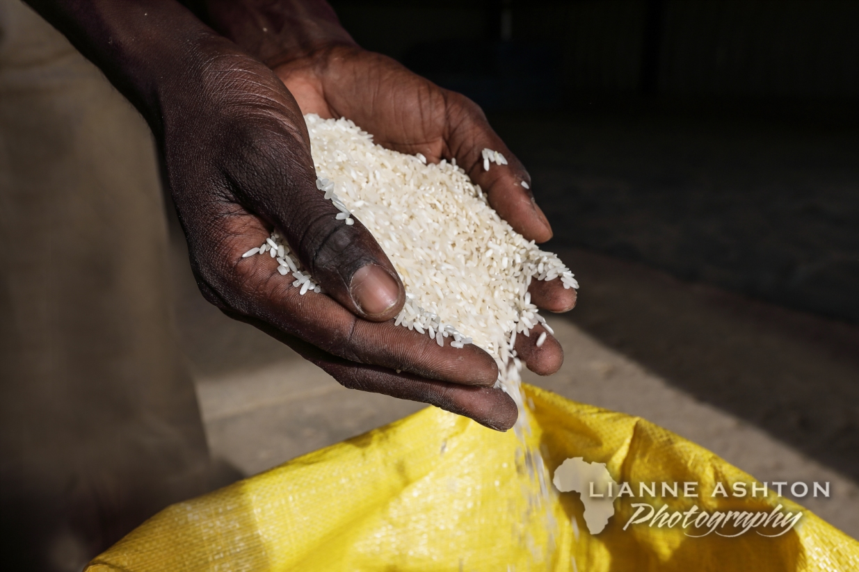 Coumba rice