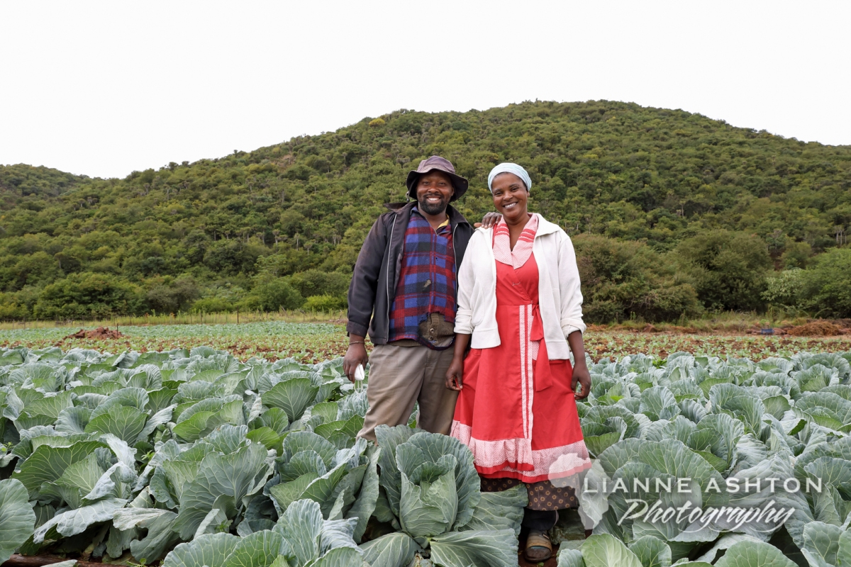 Gehla, the Cabbagefarmer