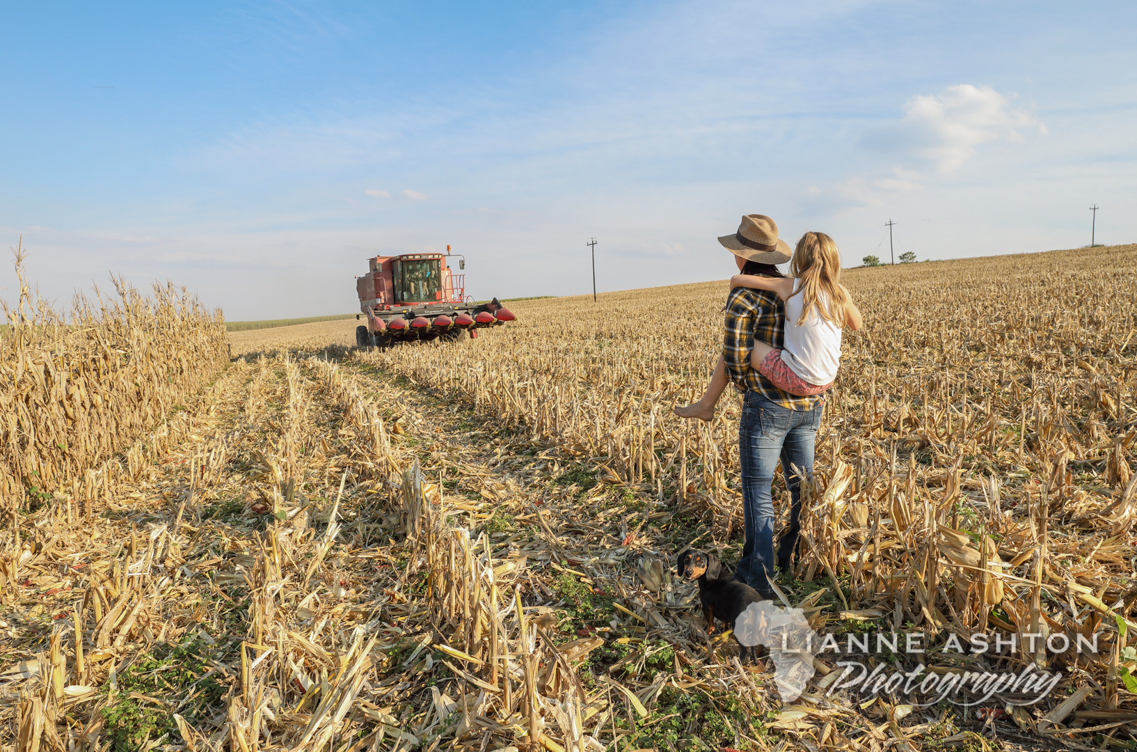 Farmlife (6)