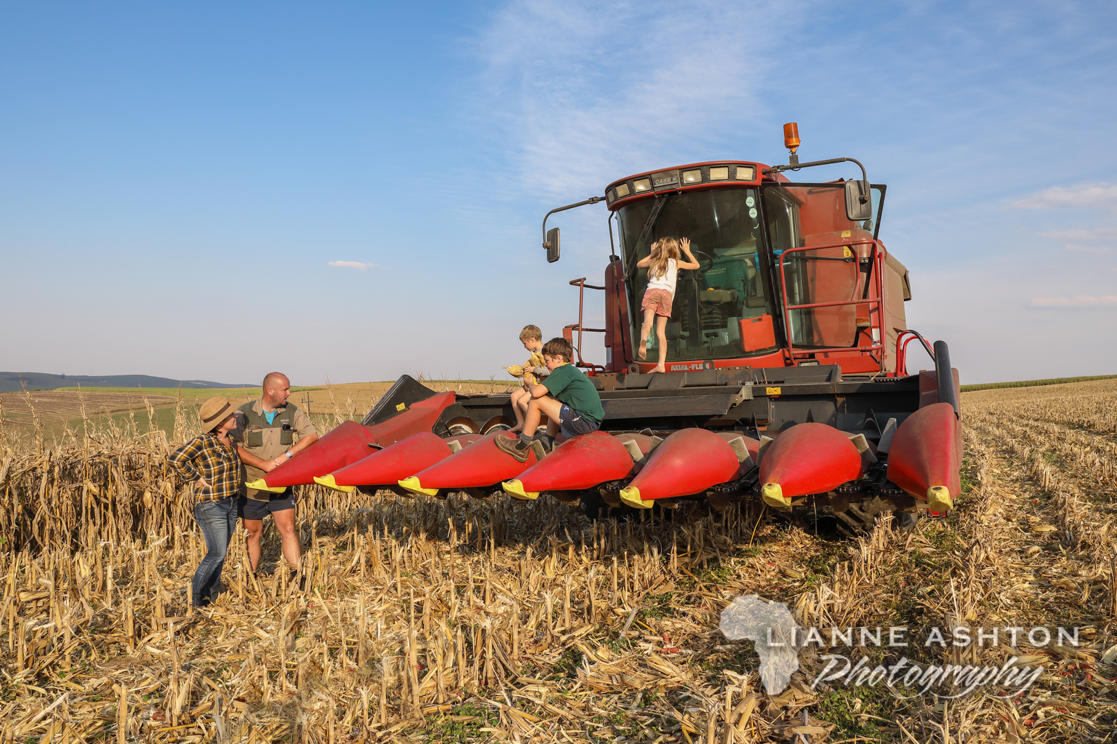 Harvest day (7)