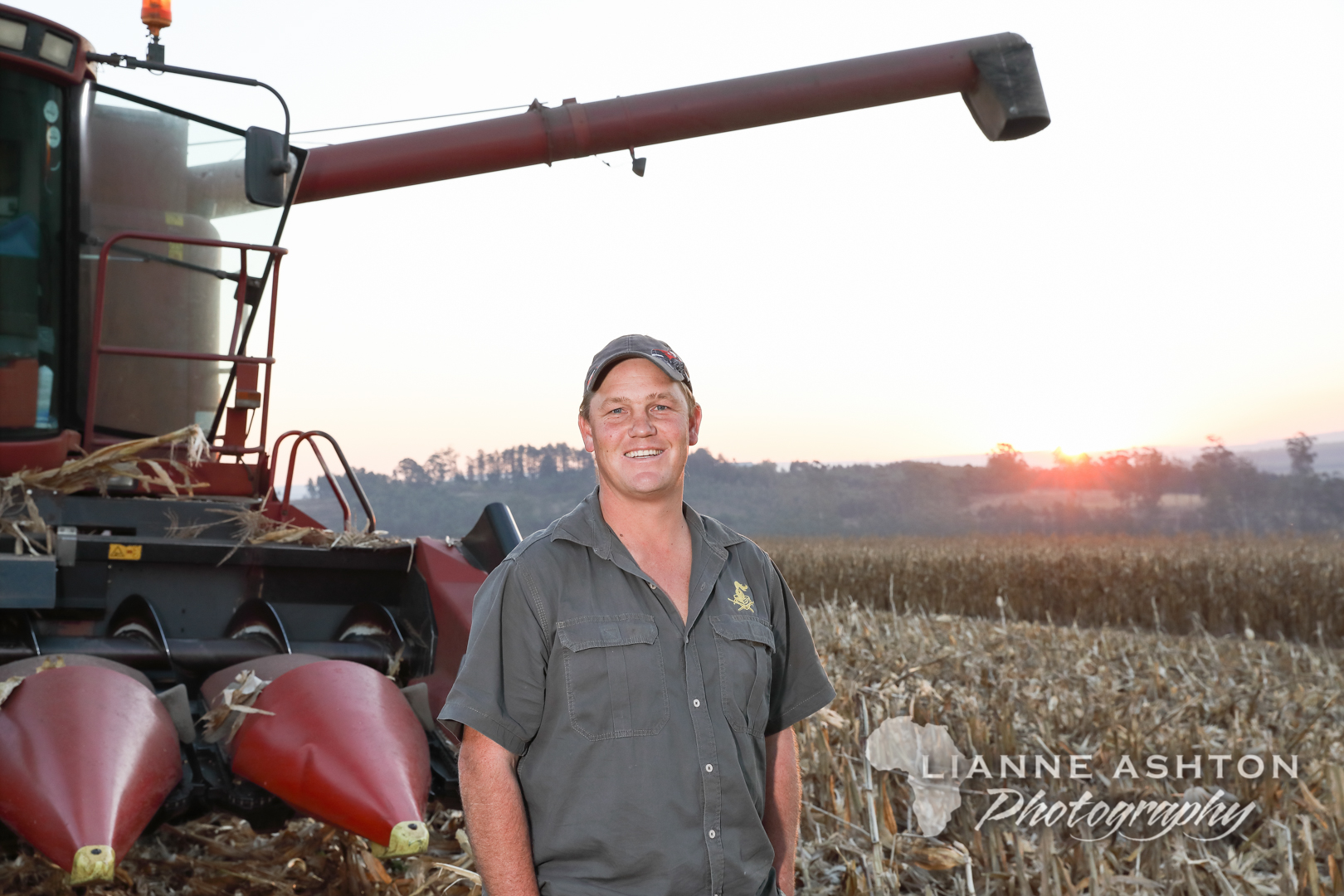 Maize harvest (69)